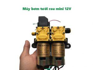 Máy bơm tưới rau mini 12v